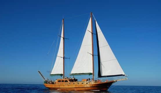 aphrodite-boat-gran-canaria
