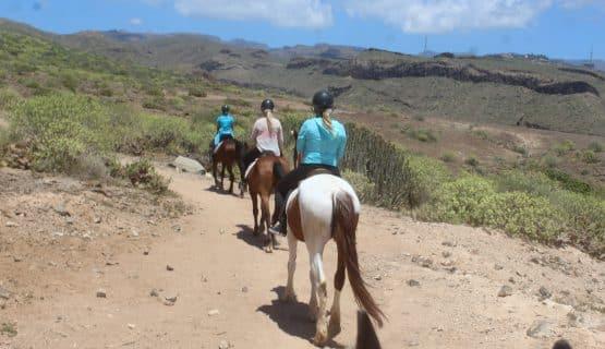 horse-riding-trip-in-gran-canaria