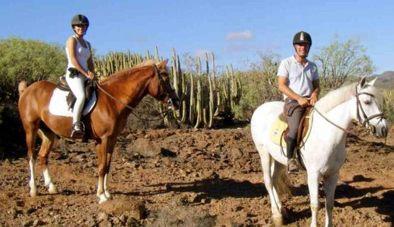riding-horses-gran-canaria