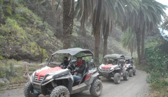 buggy-tour-gran-canaria-through-the-forrest