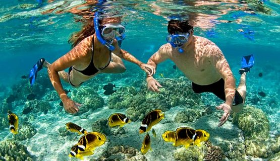 snorkeling-from-the-boat-trip-gran-canaria