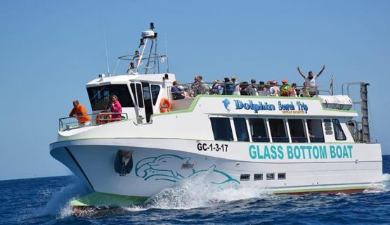 Glass bottom boat gran canaria